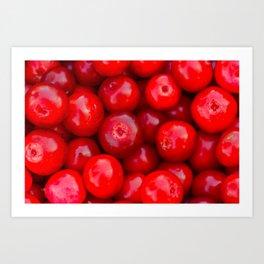 Lingonberry berry fruit background Art Print