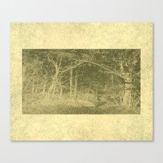 There is unrest in the forest Canvas Print