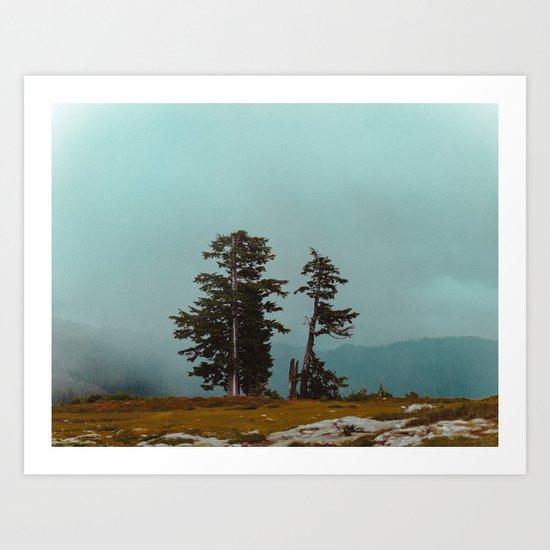 Pacific Northwest Wild Art Print