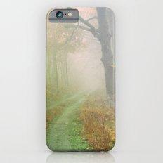 Autumn Road iPhone 6s Slim Case