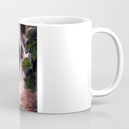 Lady Tarantula Coffee Mug