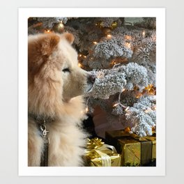 fluffy chow chow puppy in front of christmas tree Art Print