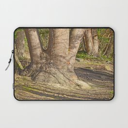 Long Shadows in an Enchanted Madrona Forest Laptop Sleeve
