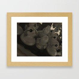 One Eyed Ducks! Framed Art Print