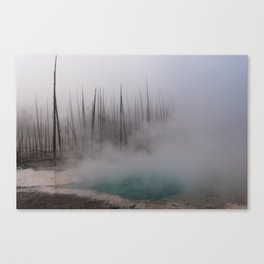 Steamy Hot Spring in Yellowstone Canvas Print