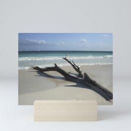 Carribean sea 13 Mini Art Print