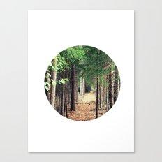 Wonderwoods Canvas Print