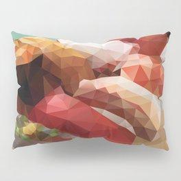 Nigiri Sushi Platter Polygon Art Pillow Sham