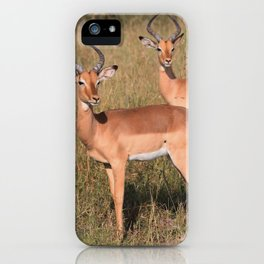 Boys Looking for Girls iPhone Case