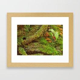 Moss Hysteria Framed Art Print