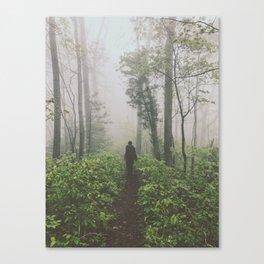 Through The Mist • Appalachian Trail Canvas Print