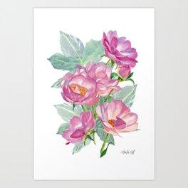 Wild Roses Watercolor art, original artwork, poster art, pink and delicate. Art Print