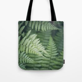 Where the Redwood Fern Grows Tote Bag