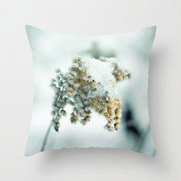 Frost & beauty Throw Pillow