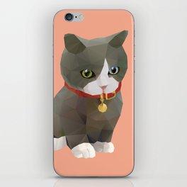 Kitten Polygon Art iPhone Skin