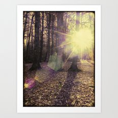 Wild Light Art Print