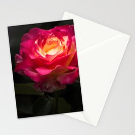 A Rose for Love Stationery Cards