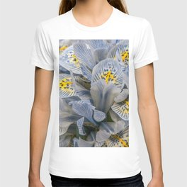 Blue and Yellow Dwarf Iris by Teresa Thompson T-shirt