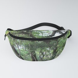 Hiking in Florida Fanny Pack