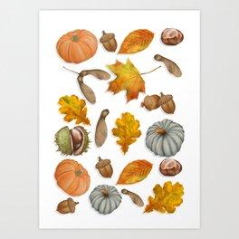 Autumnal Elements Art Print