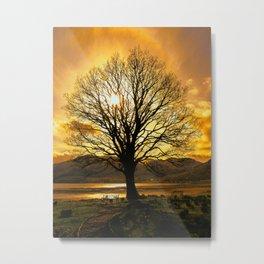 Tree of Fire Metal Print