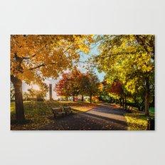 Crazy Fall Canvas Print