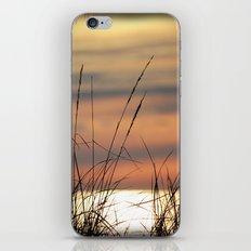 Grassy Breezes iPhone & iPod Skin