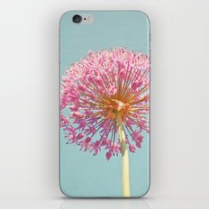 Pink Allium iPhone Skin