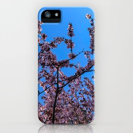 South Portland Spring 2018 (1) iPhone Case
