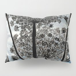 Queen Anne's Lace from a bug's view Pillow Sham