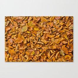 Dark yellow autumn leaves Canvas Print