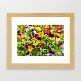 Summer Vibrance Framed Art Print