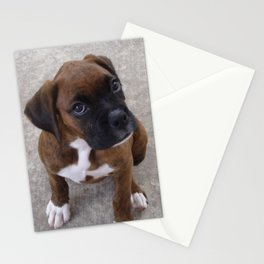 Inquisitive Boxer Pup Stationery Cards