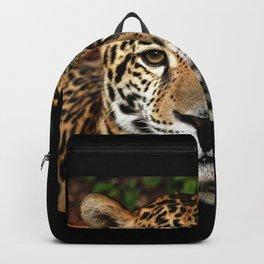 Belizean Jaguar Photograph Backpack