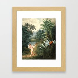 Cupid : New Illustration Of The Sexual System Framed Art Print