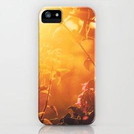 Lombok sunrise iPhone Case