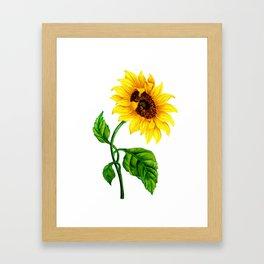 Summer Spring Sunflower Framed Art Print