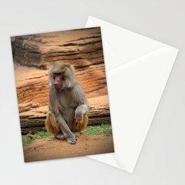 Hamadryas Baboon Stationery Cards