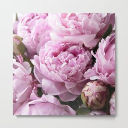Dream on, Peonies... Metal Print