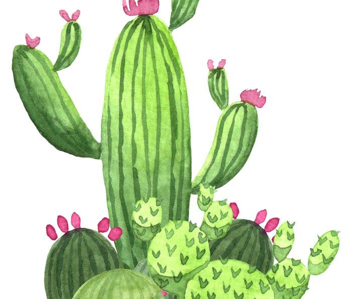 Green Cacti with Pink Flowers Metal Travel Mug