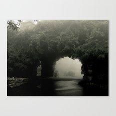 Pass Canvas Print