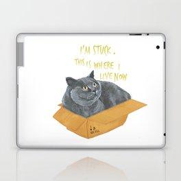 Boxcat Laptop & iPad Skin