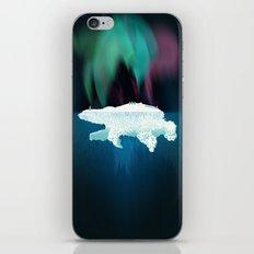 Polar Ice iPhone & iPod Skin