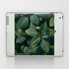 Growth III Laptop & iPad Skin