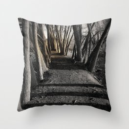 Path of Shadows Throw Pillow