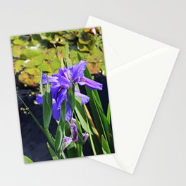 An Igniting Attraction II Stationery Cards