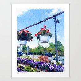 Geraniums For Sale Art Print