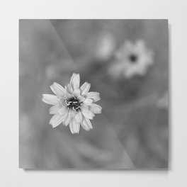 Woods flower. Mysteries of the forests Metal Print