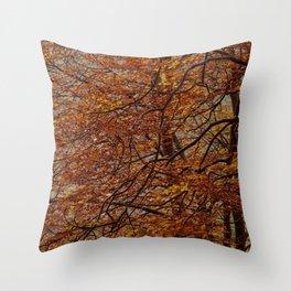 autumm' colours Throw Pillow