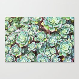 Rosettes Of Green Canvas Print